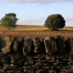 Photograph of Peak District, Eastern Moors, by Steve Withington