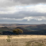 Photograph of Peak District by Steve Withington