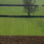 Moss Valley, Derbyshire