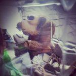 Great Simian Awakening - photo by Steve Withington
